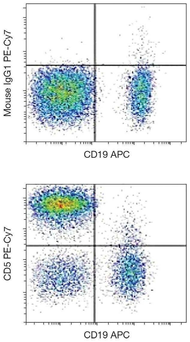 CD5 Antibody (A15845)