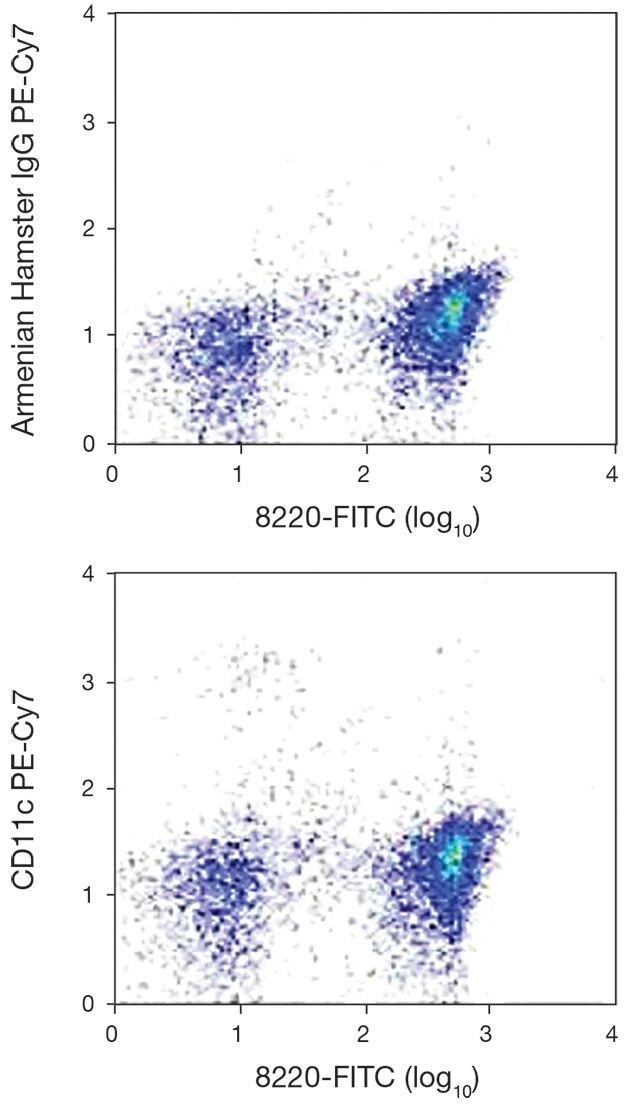 CD11c Antibody (A15849)