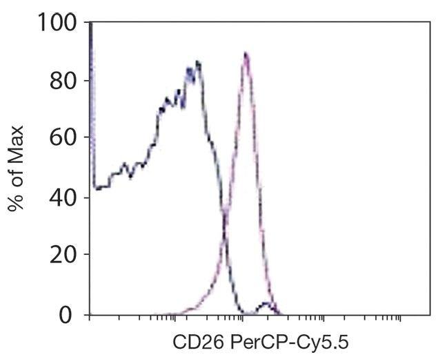 CD26 Antibody (A15866)