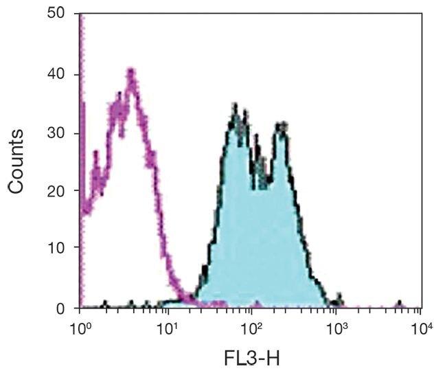 H-2Db Antibody (A16197)