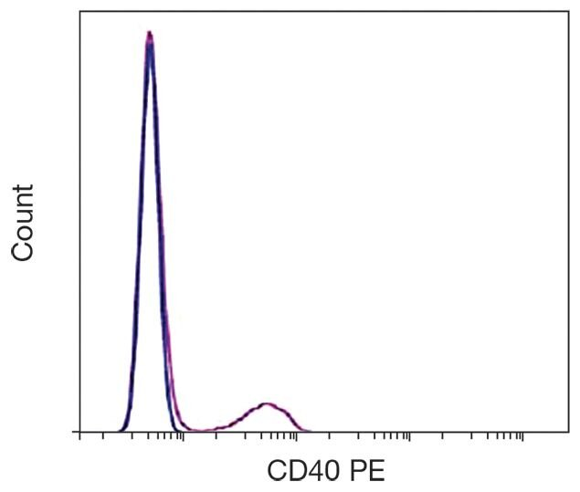 CD40 Antibody (A16206)