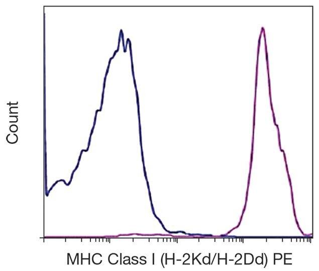 H-2Kd/H-2Dd Antibody (A16210)