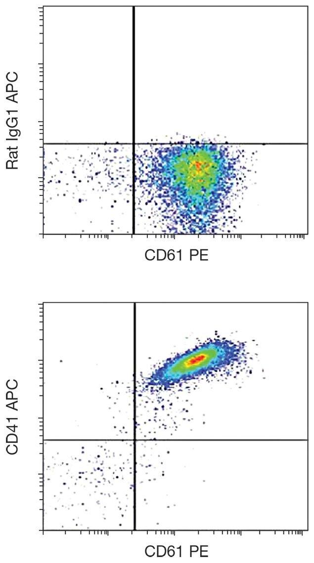 CD41 Antibody (A16229)