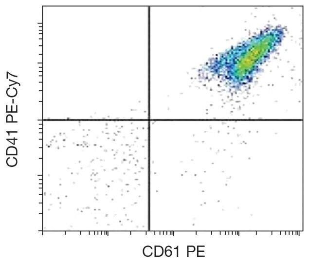 CD41 Antibody (A16240)