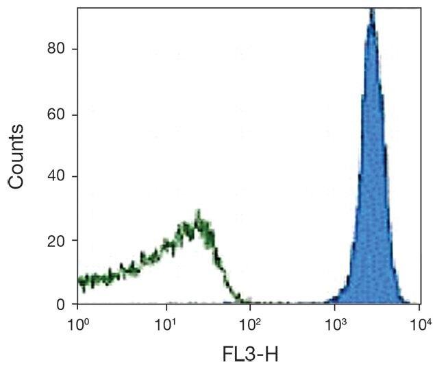 CD45.2 Antibody (A16364)