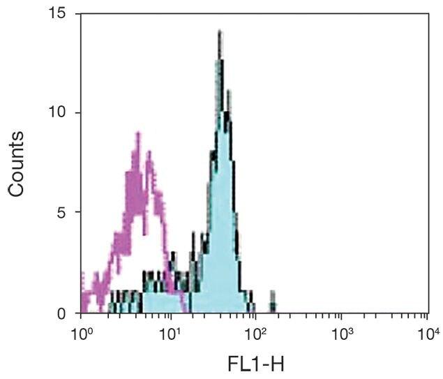 CD116 Antibody (A16374)