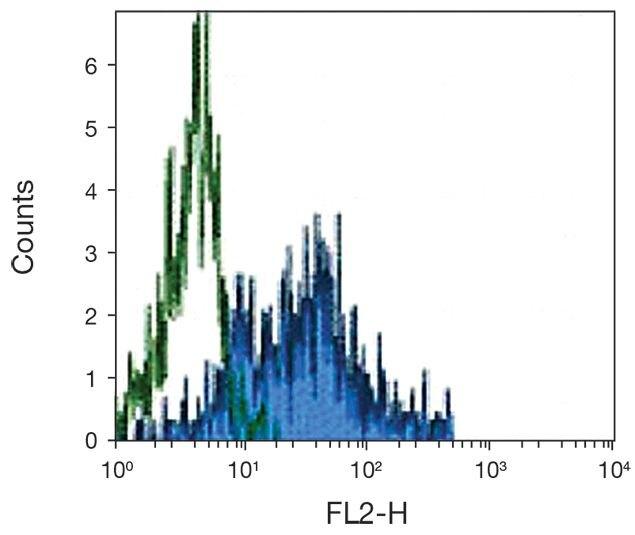 CSF1R Antibody (A16393)