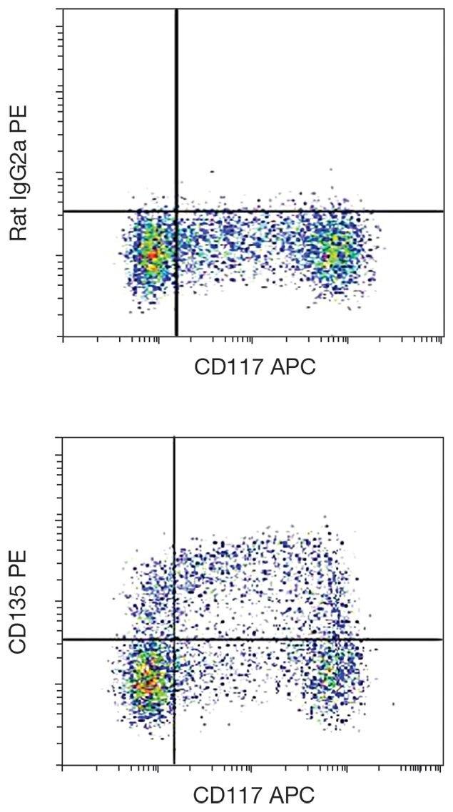 FLT3 Antibody (A16400)