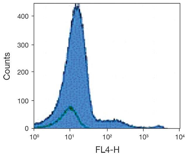 CD123 Antibody (A16417)
