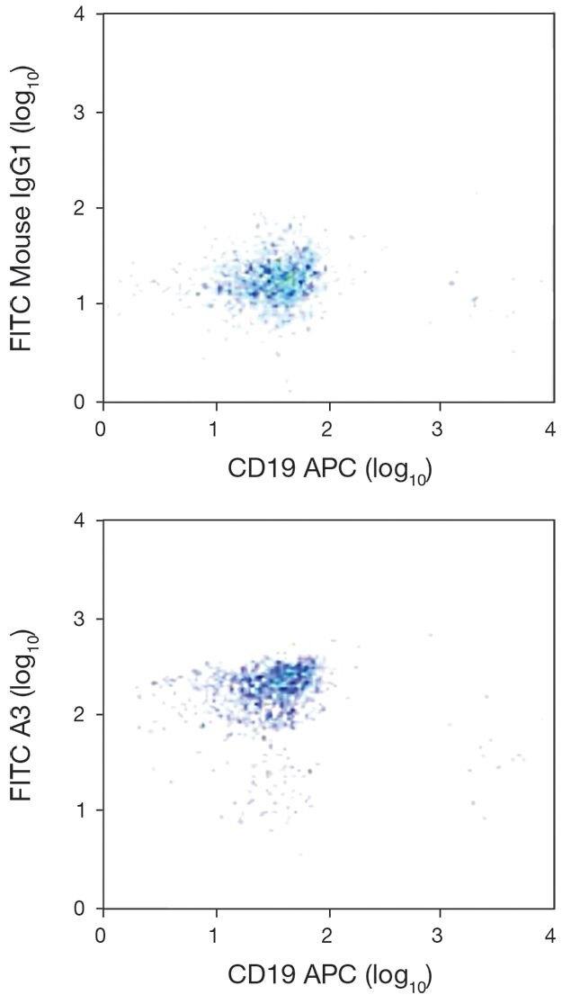 PTPRJ / DEP1 Antibody (A18340)