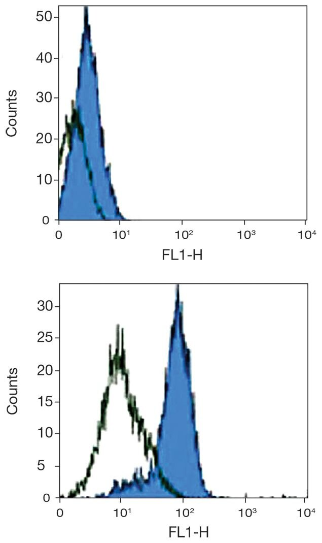CD205 Antibody (A18345) in Flow Cytometry