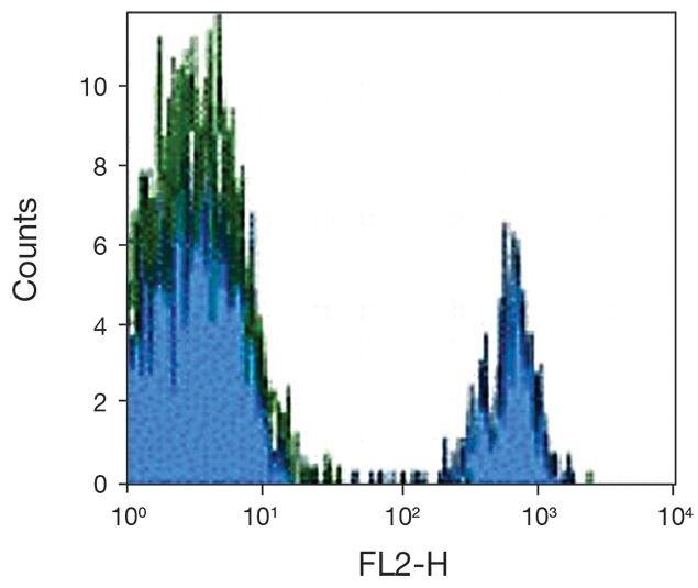 RP105 / CD180 Antibody (A18363)