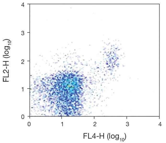 2B4 / CD244 Antibody (A18377)