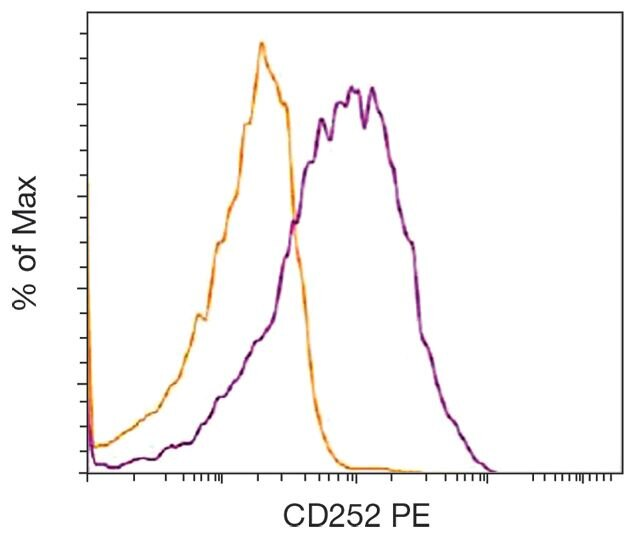 OX40L Antibody (A18378)