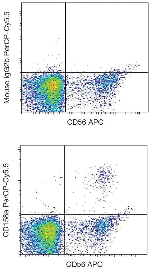KIR2DL1 / CD158a Antibody (A18395)