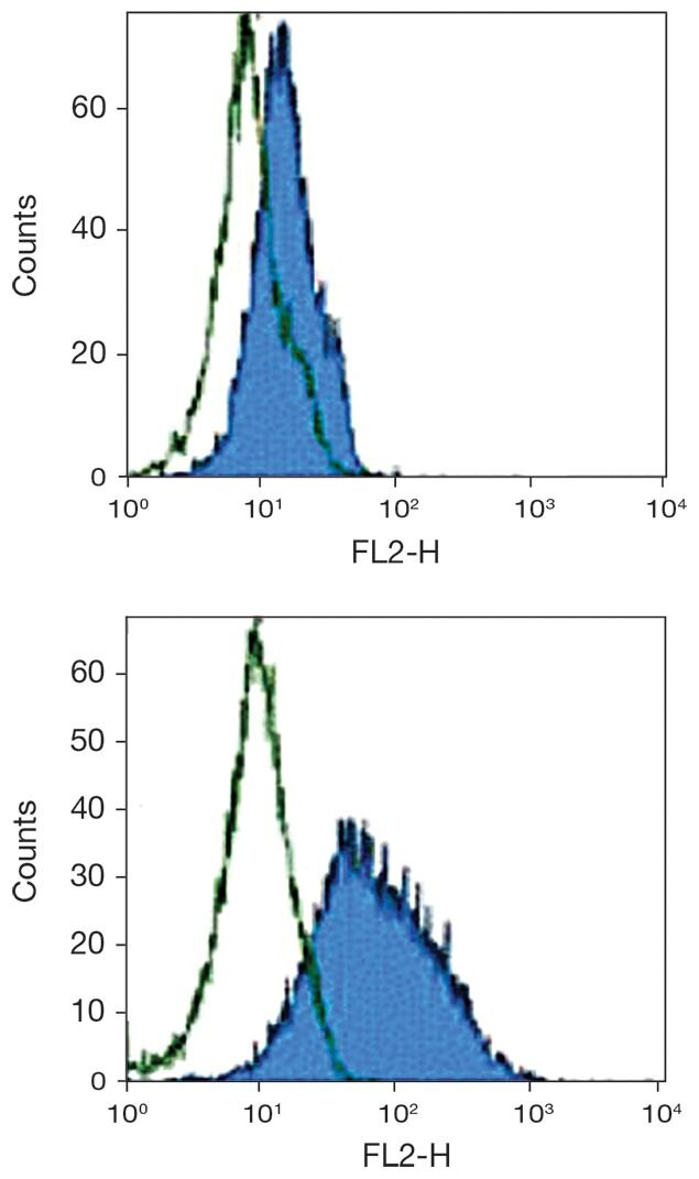 B7-H3 / CD276 Antibody (A18419)