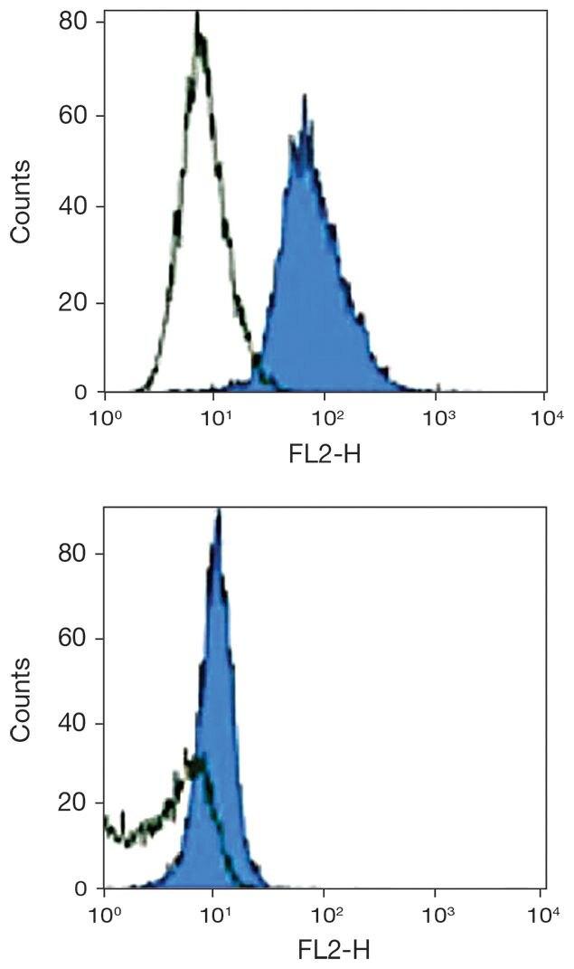 TLR3 Antibody (A18430)