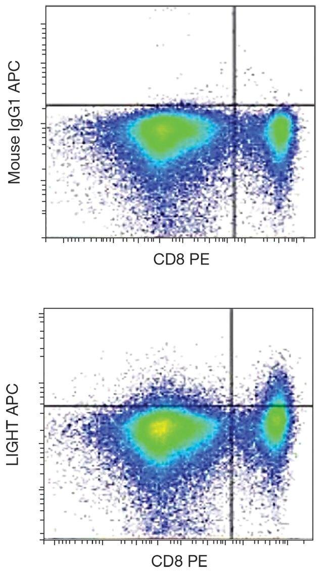 LIGHT / CD258 Antibody (A18442)
