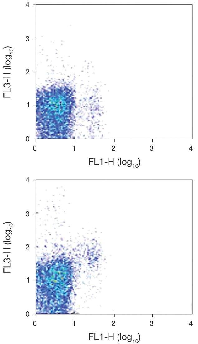 NKG2D / KLRK1 Antibody (A18451)