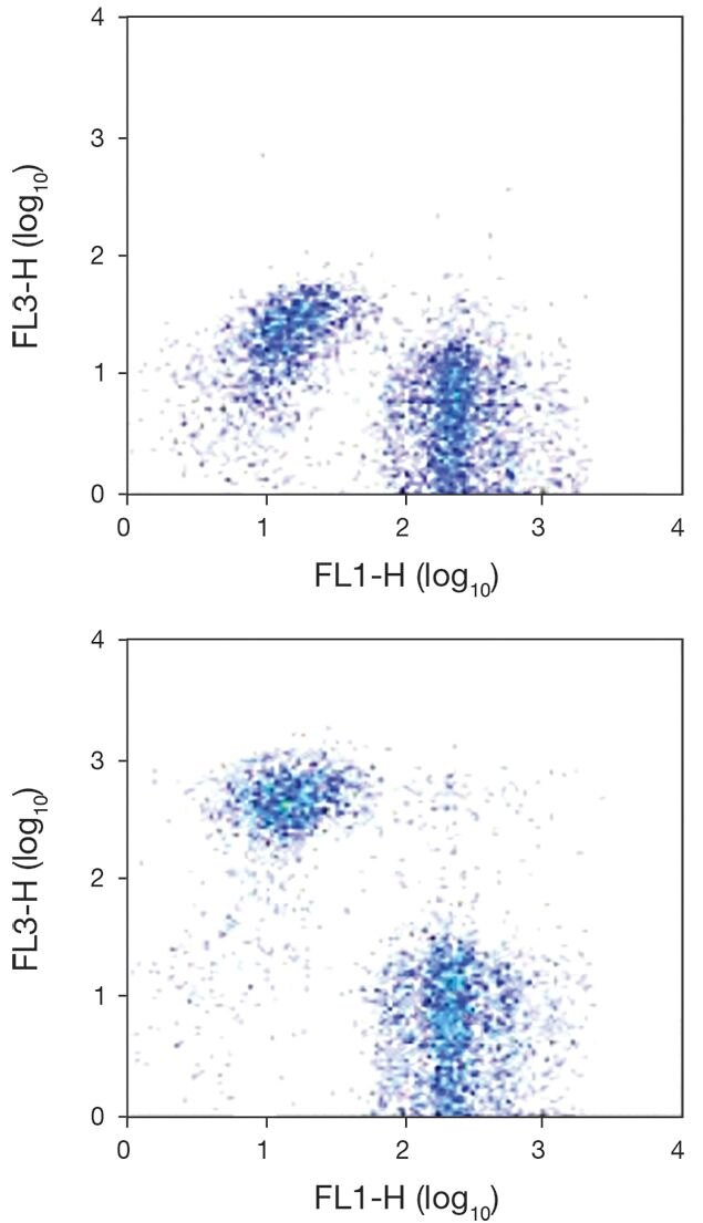 Erythroid Cell Marker / TER-119 Antigen Antibody (A18452)