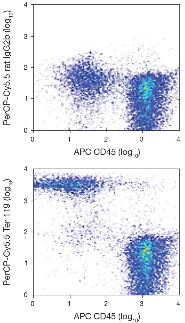 Erythroid Cell Marker / TER-119 Antigen Antibody (A18456)