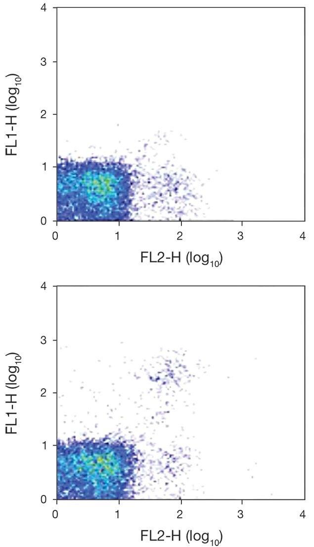 Ly-49G2 Antibody (A18458)