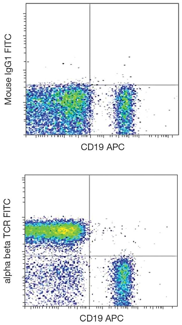 TCR alpha + beta Antibody (A18471)