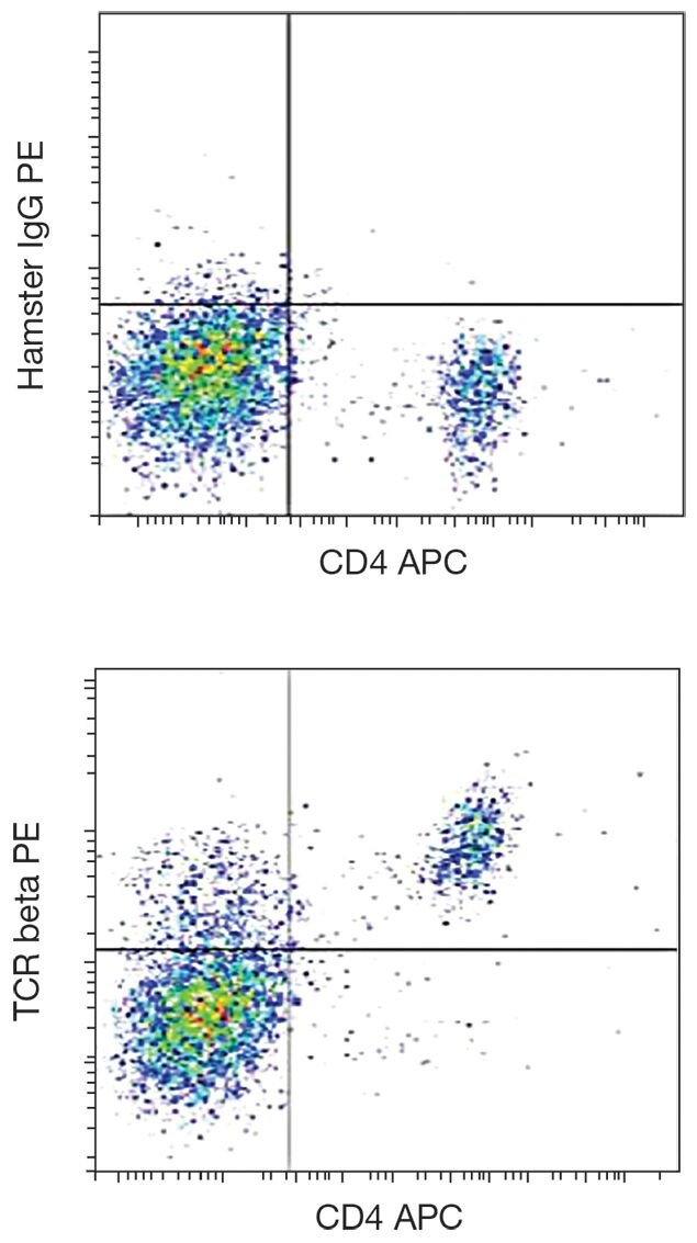 TCR alpha + beta Antibody (A18485)