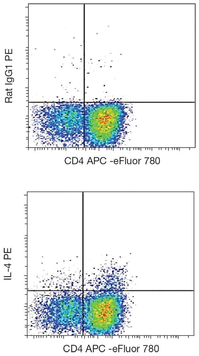 IL-4 Antibody (A18490)
