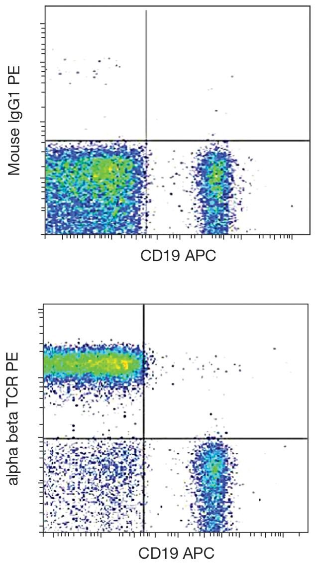TCR alpha/beta Antibody (A18496)