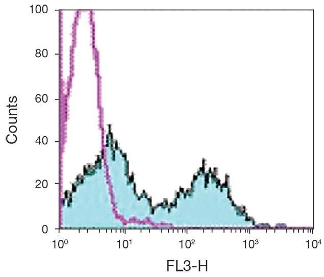 TCR alpha + beta Antibody (A18497)