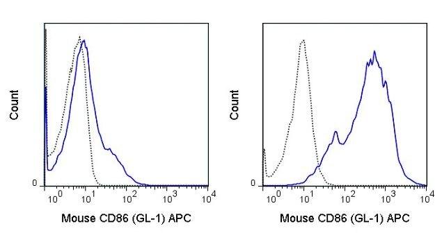 CD86 / B7-2 Antibody (A18621)