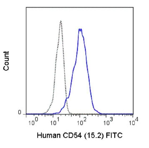 ICAM-1 / CD54 Antibody (A18656)