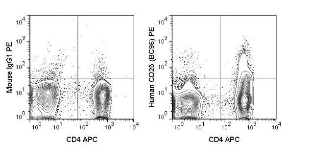 CD25 Antibody (A18678)