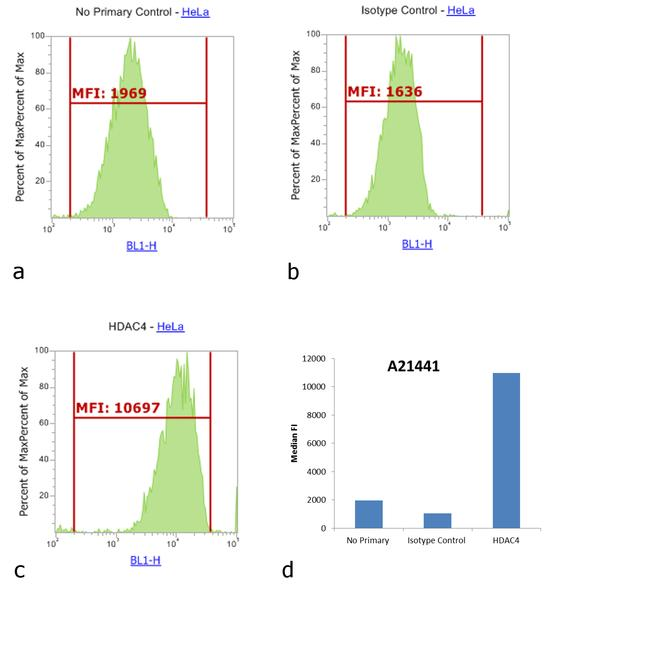 Rabbit IgG (H+L) Cross-Adsorbed Secondary Antibody (A-21441) in Flow Cytometry