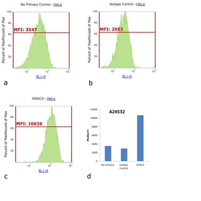 Rabbit IgG (H+L) Secondary Antibody (A24532) in Flow Cytometry