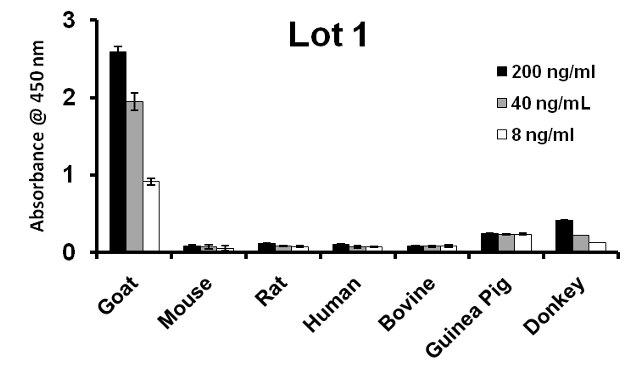 Goat IgG (H+L) Secondary Antibody (A27011) in ELISA