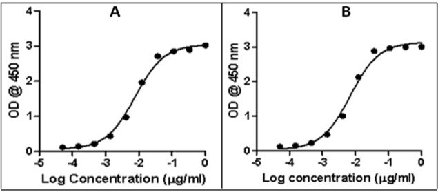 Rabbit IgG (H+L) Secondary Antibody (A27033) in ELISA