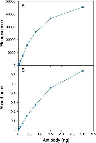 Fluorescein/Oregon Green Antibody (A-6421) in