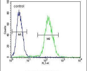 ABHDB Antibody (PA5-26427) in Flow Cytometry
