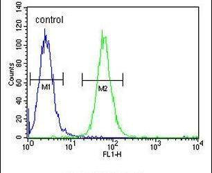 ABHEB Antibody (PA5-26705) in Flow Cytometry
