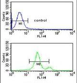 ASIC1 Antibody (PA5-26278) in Flow Cytometry