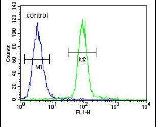 ACF Antibody (PA5-24164) in Flow Cytometry