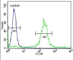 ADAM19 Antibody (PA5-26816) in Flow Cytometry