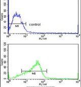 ADAM9 Antibody (PA5-25959) in Flow Cytometry