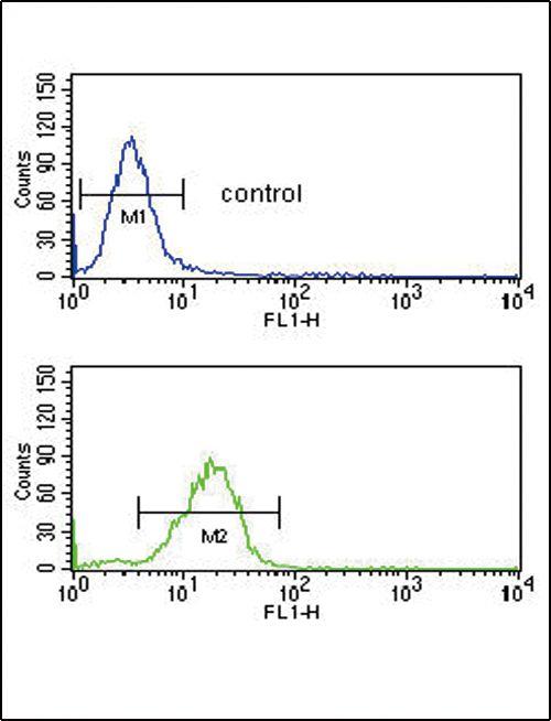RAGE Antibody (PA5-24787) in Flow Cytometry