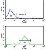 AGR3 Antibody (PA5-26431) in Flow Cytometry