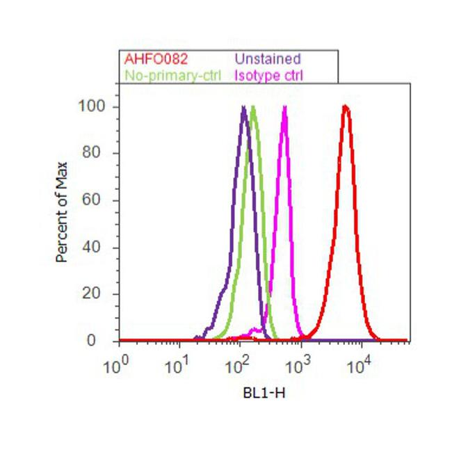Cyclin D1 Antibody (AHF0082) in Flow Cytometry