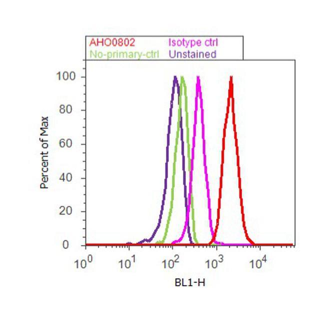 eIF2a Antibody (AHO0802) in Flow Cytometry