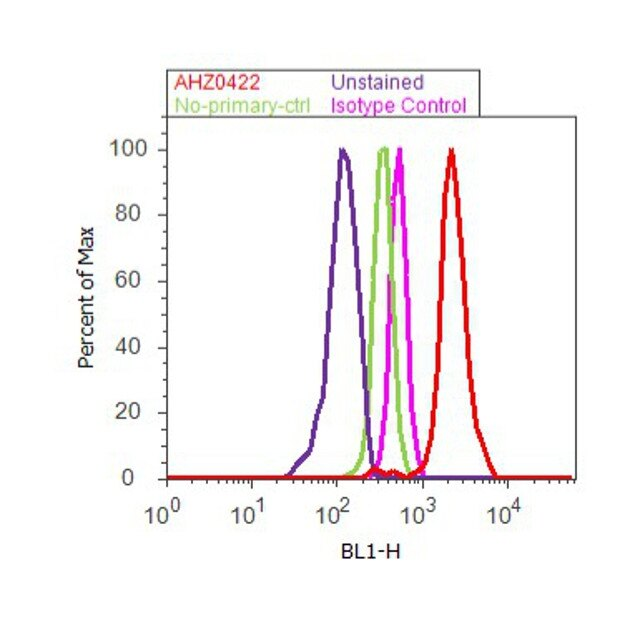 p21 Antibody (AHZ0422) in Flow Cytometry